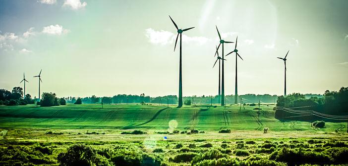 Florent Delorme: 'Gaat de ECB de energietransitie financieren?'