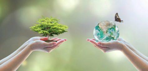 Integreer biodiversiteit in uw beleggingsbeleid!