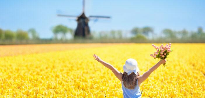 Nederlandse economie nog niet klaar met groeien (ING)