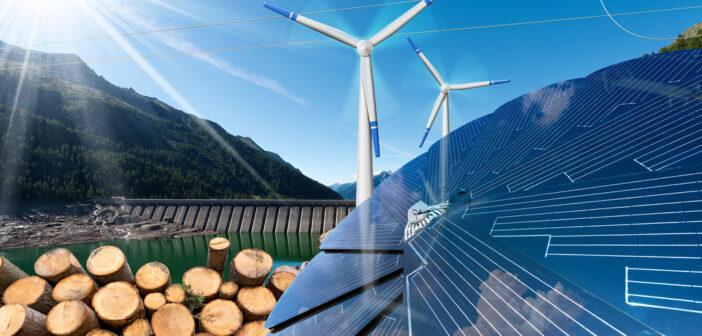 Van twee kanten: biomassa