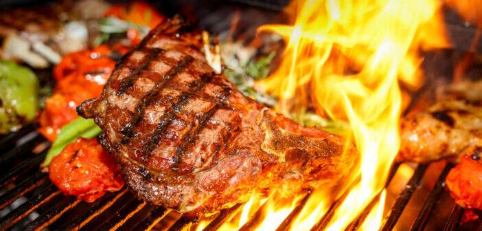 De vleessector onder vuur
